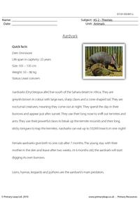 Aardvark comprehension