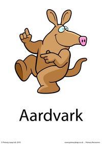 Aardvark flashcard 1