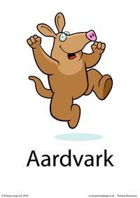 Aardvark flashcard 2