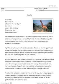 Giraffe comprehension