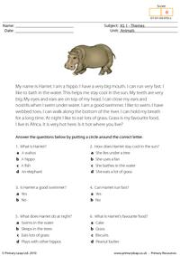 Hippo comprehension
