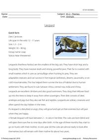 Leopard comprehension