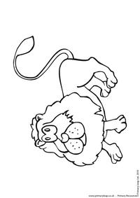 Lion colouring page 1