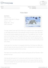 Polar bear comprehension