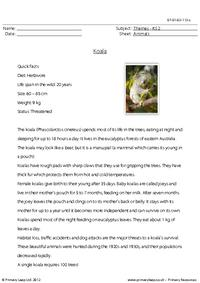 Reading comprehension - Koala