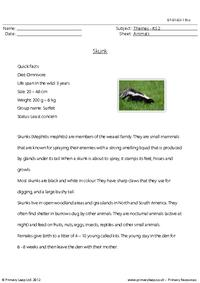Reading comprehension - Skunk