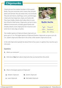 Chipmunks - Reading comprehension