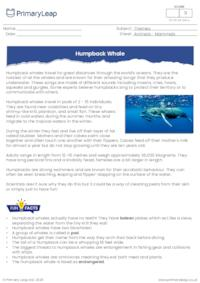 Humpback Whale - Reading Comprehension