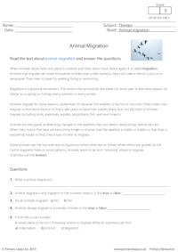 Reading comprehension - Animal Migration