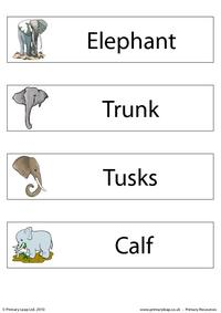 Elephant flashcard - set of 4