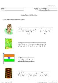 Bengal tiger handwriting