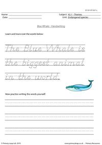 Blue whale handwriting
