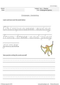 Chimpanzee handwriting