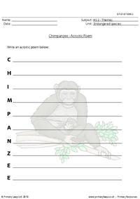 Chimpanzee acrostic poem