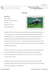Manatee comprehension