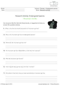 Research Activity - Mountain Gorillas