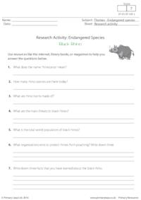 Research Activity - Black Rhino