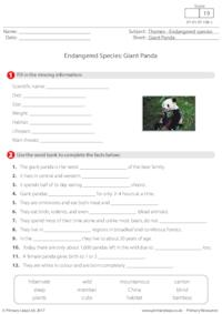 Endangered Species - Giant Panda