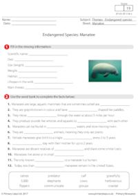 Endangered Species - Manatee
