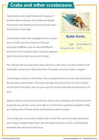 Crabs and other crustaceans - Comprehension