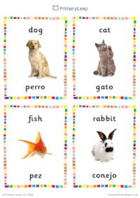 English to Spanish flashcards -  Animals