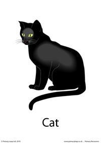 Halloween flashcard - cat
