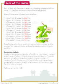 Reading comprehension - Year of the Snake