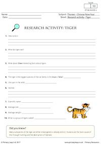Research Activity - Tiger