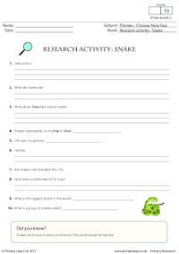 Research Activity - Snake