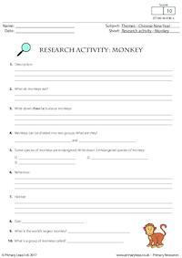 Research Activity - Monkey