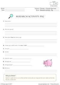 Research Activity - Pig