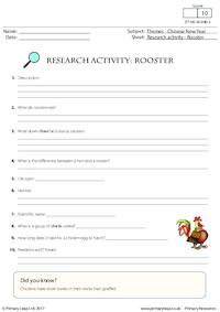 Research Activity - Rooster