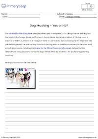 Dog Mushing - Yes or No?